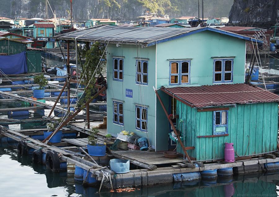 Vietnam-CatBa-27-01012015-sm