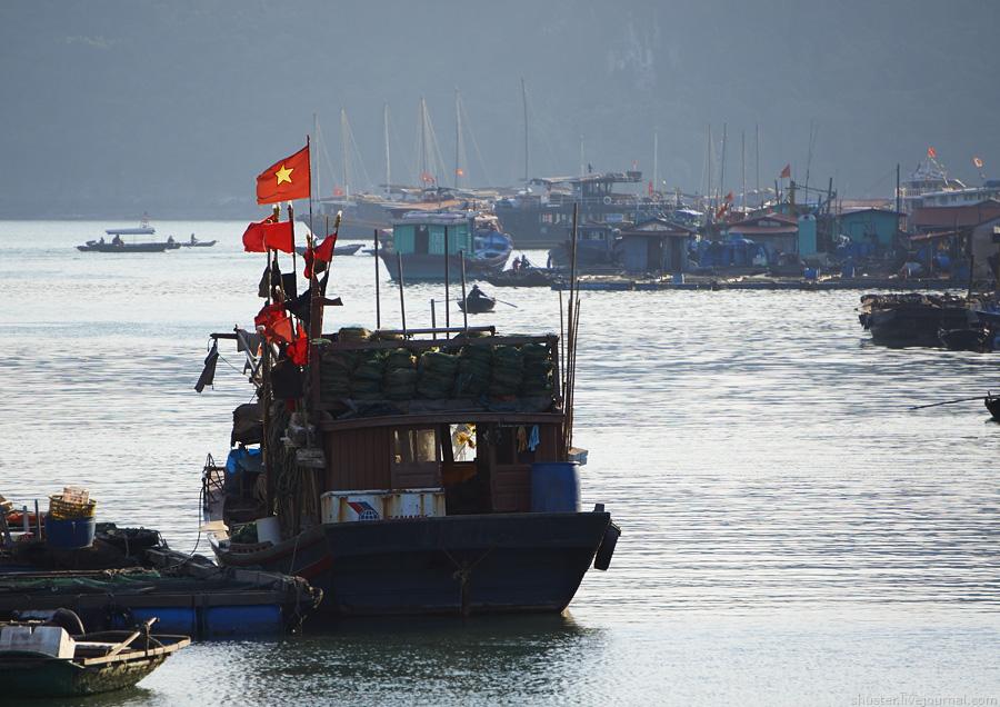 Vietnam-CatBa-28-01012015-sm