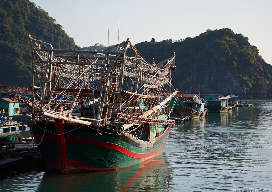Vietnam-CatBa-29-01012015-sm