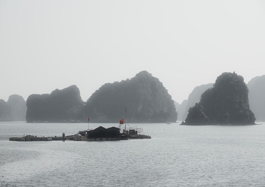 Vietnam-CatBa-53-02012015-sm
