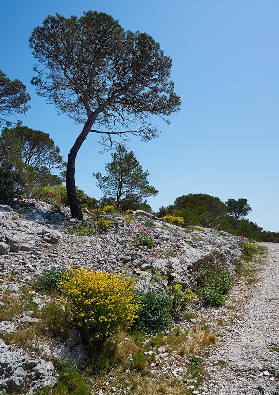 Toulon-24-090515-sm