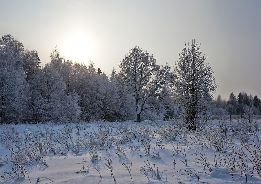 ZG-snow-02-23-01-2016-sm