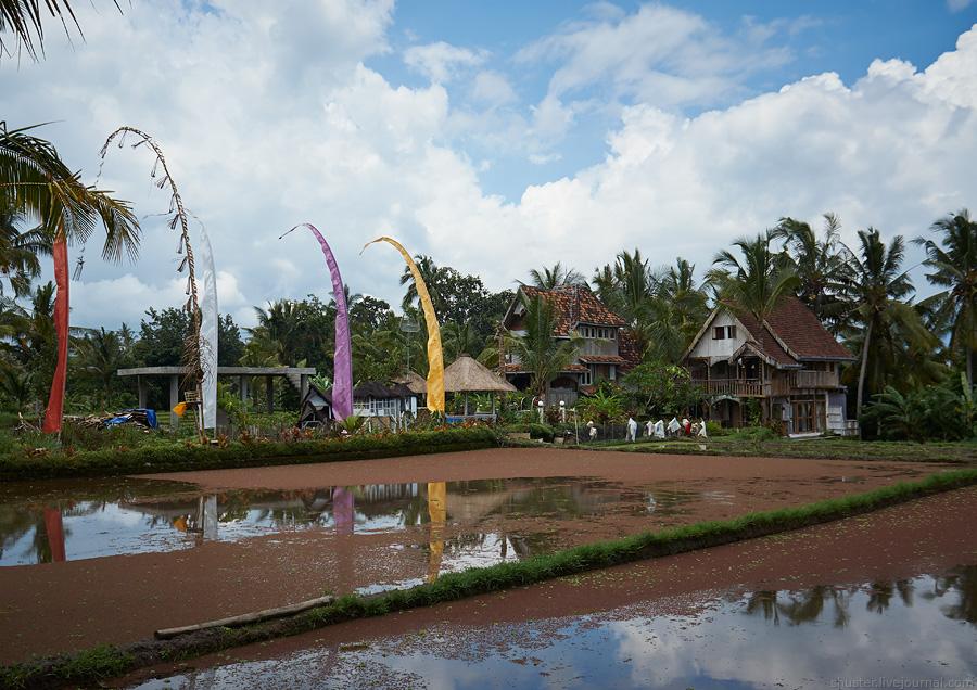Bali-2016-Ubud-09-sm