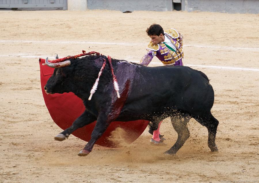 Spain2016-3-6-Madrid-sm