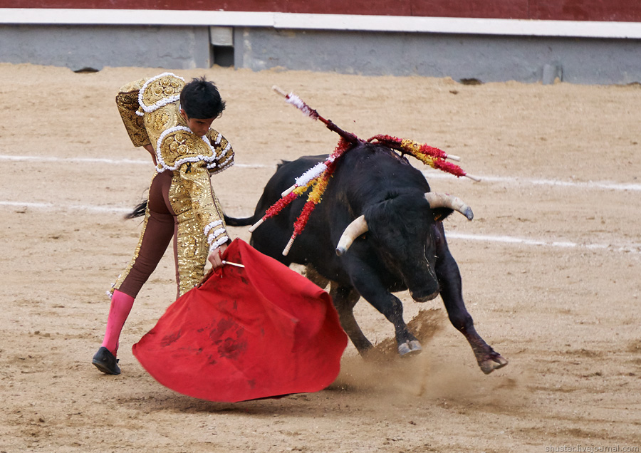 Spain2016-3-7-Madrid-sm