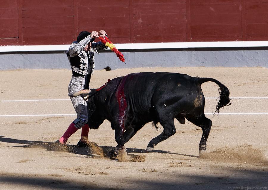Spain2016-33-Madrid-sm