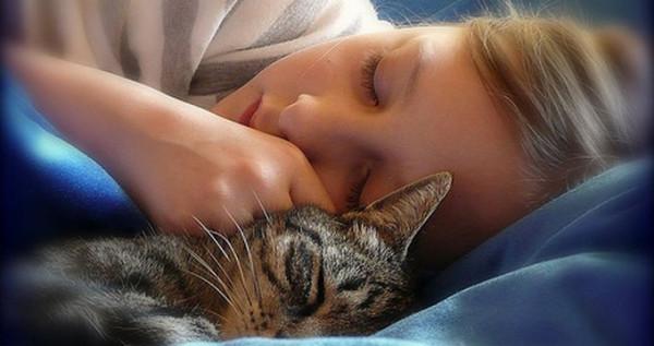 Сон - это Бог. Идите и помолитесь (с)