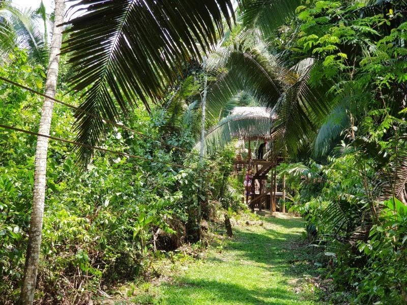 Медовый месяц в Гондурасе! Круиз на MSC Armonia