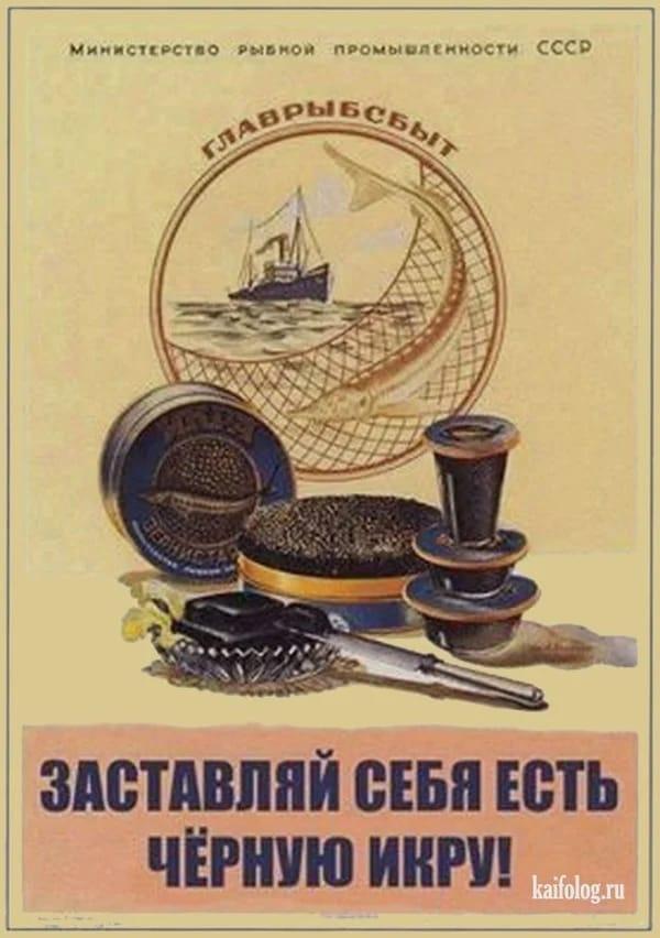 https://ic.pics.livejournal.com/sibir_muzhyk/4799978/62994/62994_original.jpg
