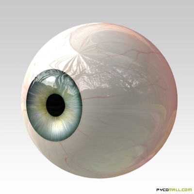 eye_eyeball_iris_pupil
