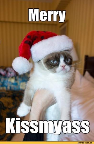 Grumpy-Cat-x-mas-9gag-%D0%BD%D0%B5%D0%BD%D0%B0%D0%B2%D0%B8%D1%81%D1%82%D1%8C-491209