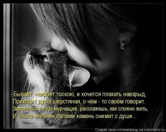 96843133_5019858_x_1f7227c0
