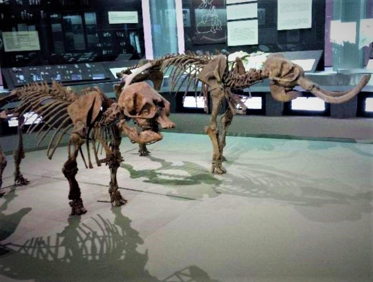 Из музея Паоло Орси, Сиракузы