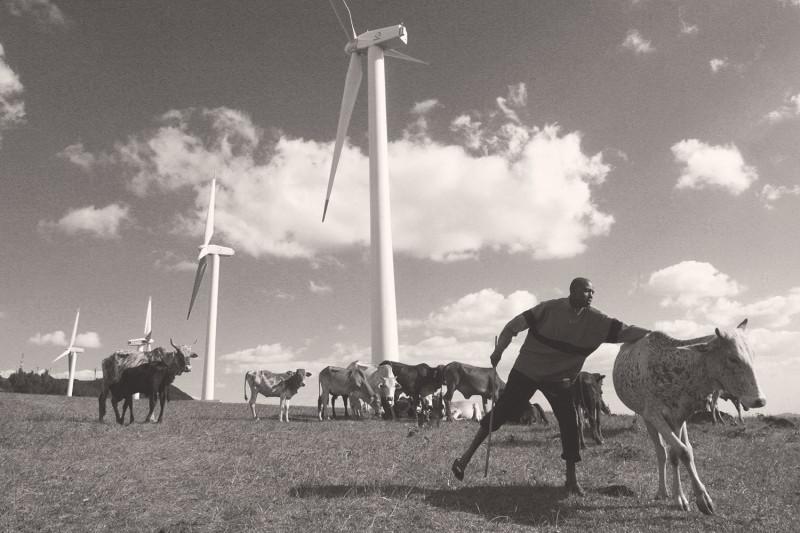 Возобновляемая энергетика становится безальтернативной
