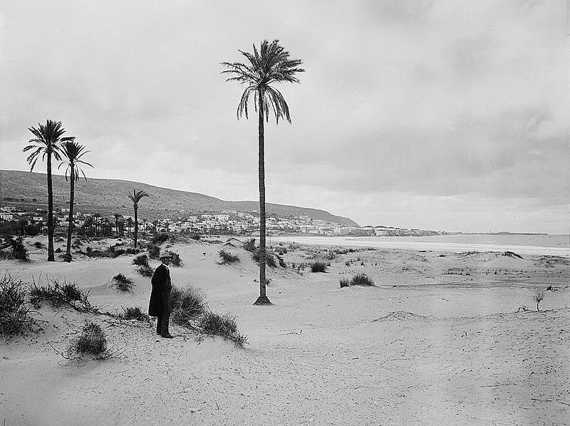 800px-View_on_Haifa_from_Shemen_beach,_no_houses_yet_in_Hadar_Hacarmel_(approximately_1898_to_1907)_008