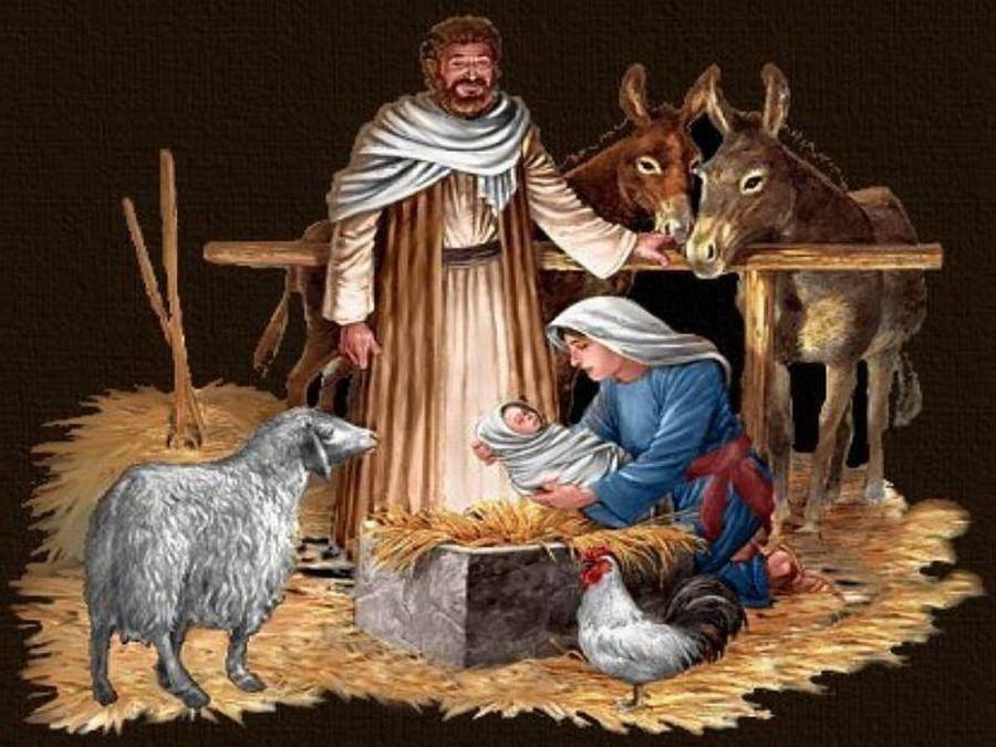 noviy-god-2012-kartinki-36