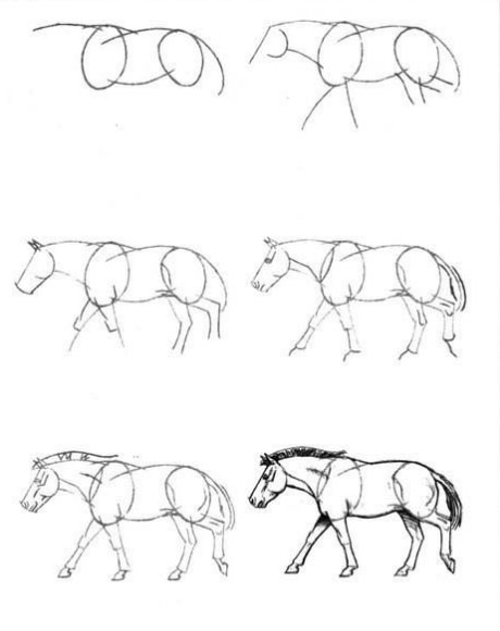 рисуем-лошадь