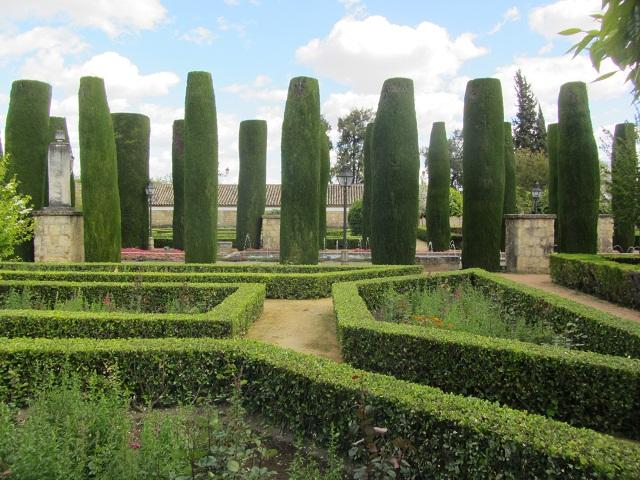 сады4