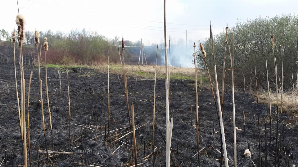 пожар2_n.jpg