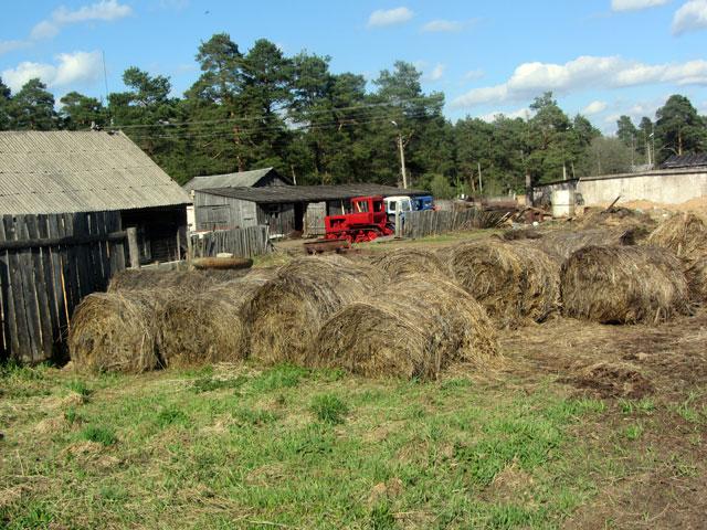 ферма1