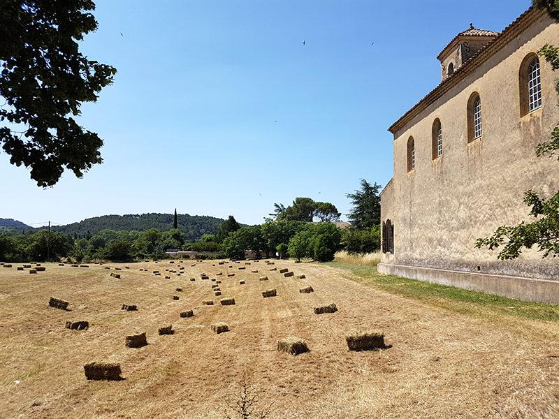 Поговорим о тревел-фото. Франция. Прованс. Дороги. Небо. Лаванда...