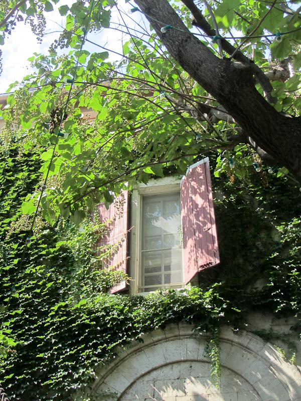 окна4