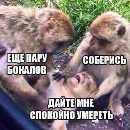 FB_IMG_1451657301944