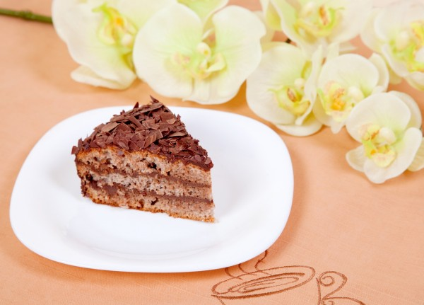 IMG_0245 Chocolate cake on white plate_измен.размер