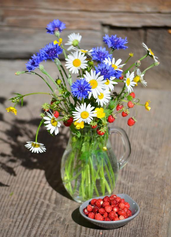 Цветы и земляника