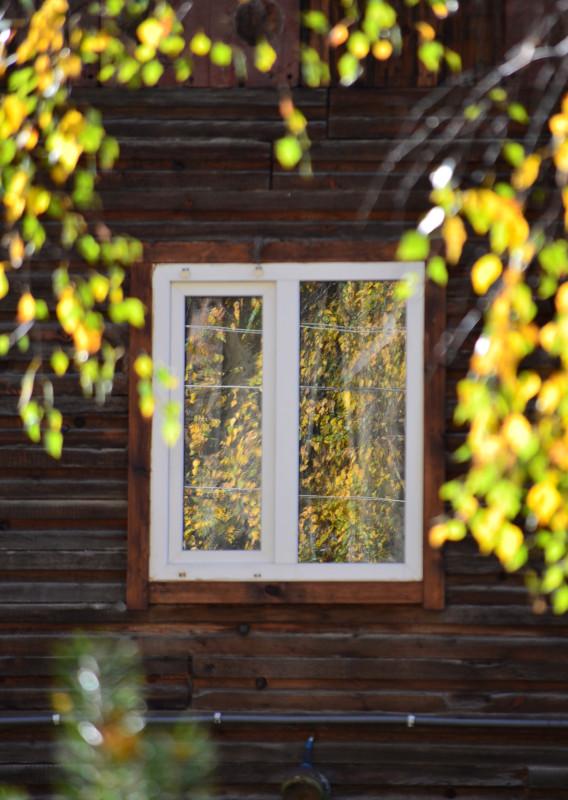 осень отражённая в окне