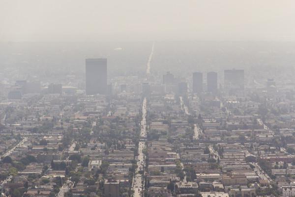 smog (1 of 2)