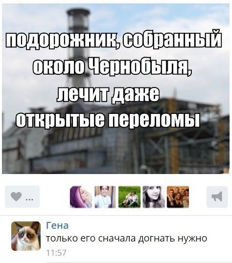 Пожар в Чернобыльской зоне потушен, - ГСЧС - Цензор.НЕТ 8026