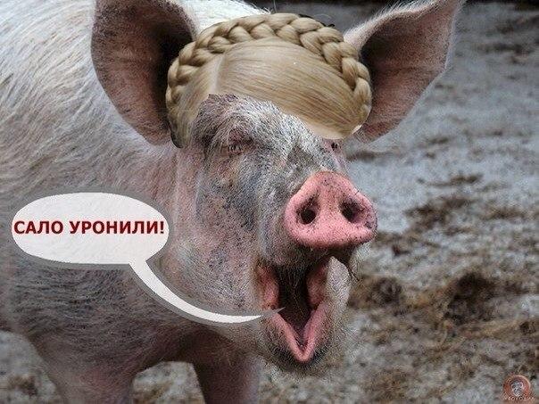 TGPqYyUbHtM