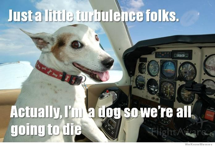 just-a-little-turbulance-folks