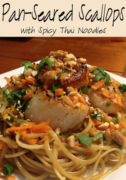 scallops-and-thai-noodlescover