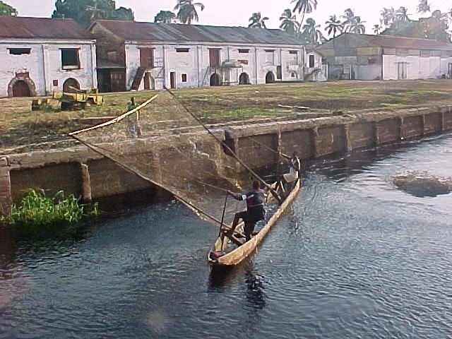 Рыбалка в Конго: sinus24