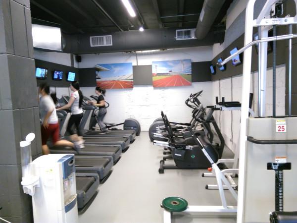 Зона для кардиотренировок в фитнес-клубе «Манго»