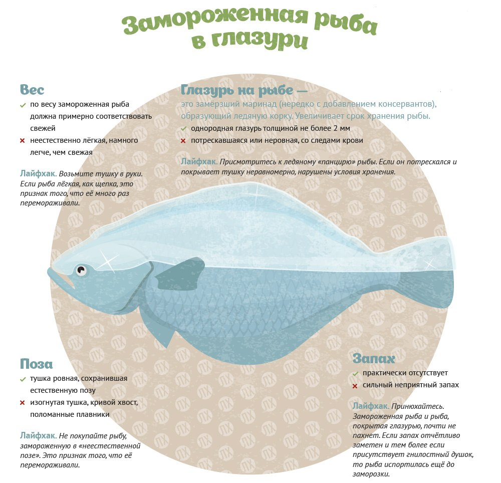 Из этой инфографики вы узнаете, как выбрать рыбу и не купить несвежий товар2