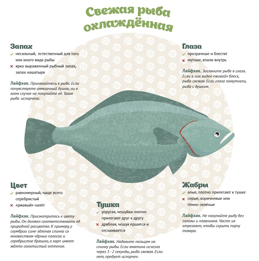 Из этой инфографики вы узнаете, как выбрать рыбу и не купить несвежий товар