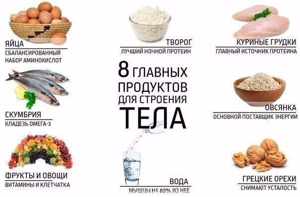 8 продуктов для строения тела