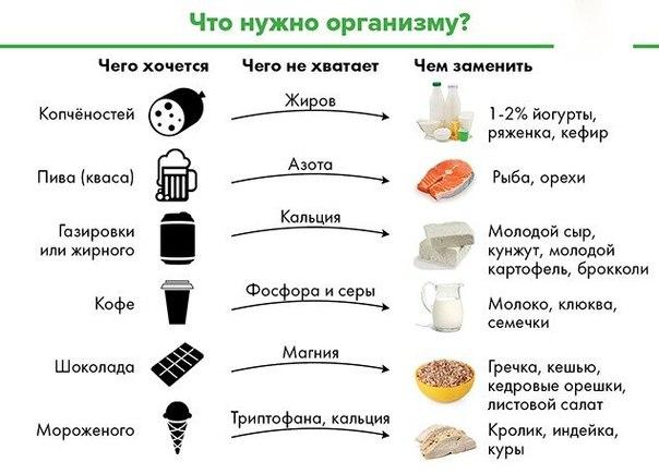 Что нужно организму