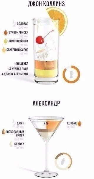 В книге содержатся рецепты приготовления разнообразных холодных и горячих безалкогольных и алкогольных напитков
