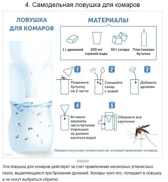 10 способов борьбы с комарами и их укусами4