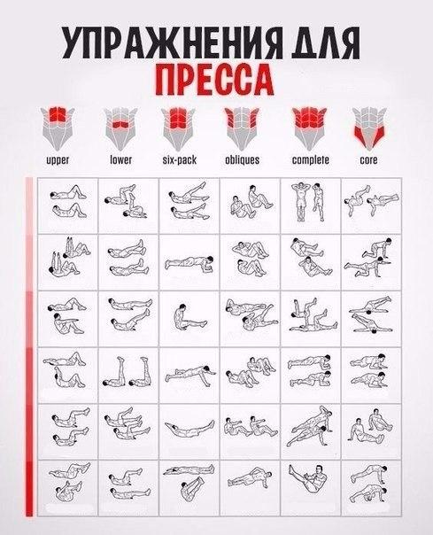 Упражнения для пресса в домашних условиях по картинкам