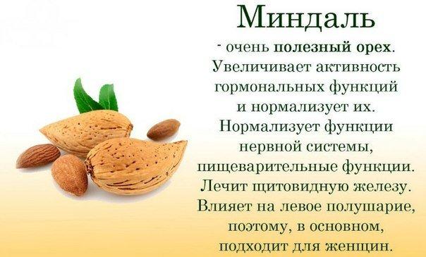 Полезные свойства разных продуктов