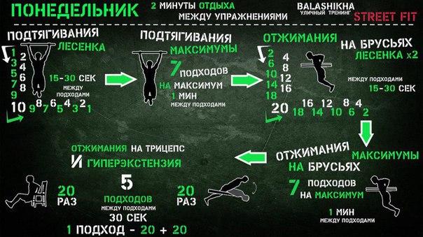Отличные упражнения на все группы мышц
