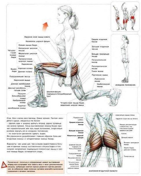В этом упражнении нагрузку получают широчайшие мышцы спины и бицепс