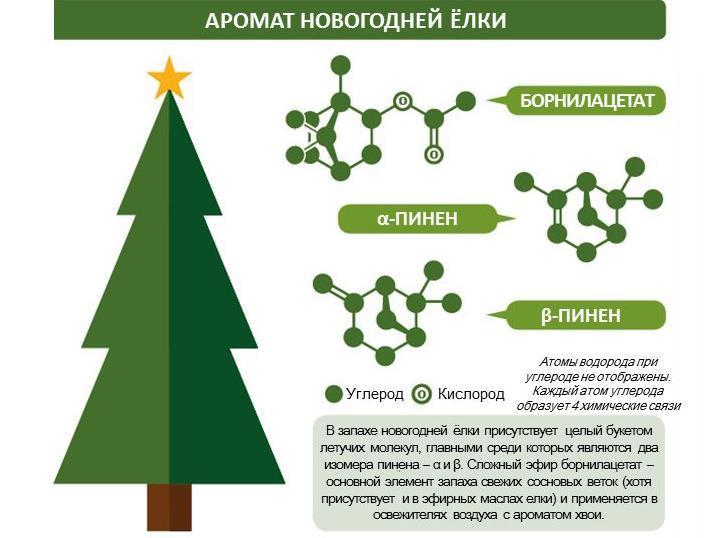 Химия Рождества