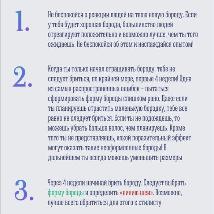 boroda_02