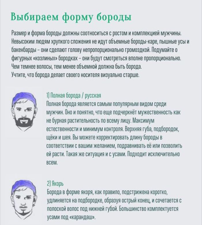 boroda_03